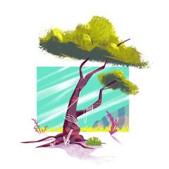 Vesikalik | I