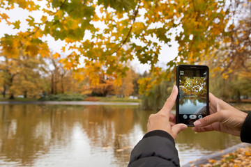 Closeup image of female hands with smartphone photographing the autumn landscape in the city Park