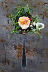 Coquille on a fork