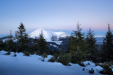 Winter landscape of a mountain range with fir forest at the foreground.