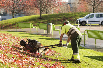lawn mower grass service gardener  in  city park