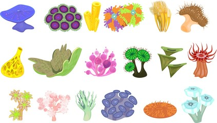 Set of different species of soft corals on white background