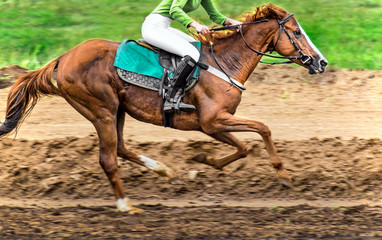 Race horse in run. A horse with a jockey runs along the racetrack track.