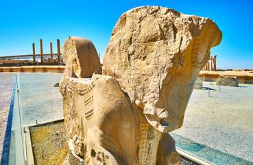Antique horse protome in Persepolis, Iran