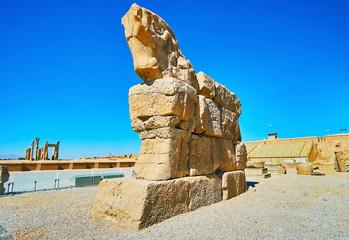 The horse head on gate of Persepolis, Iran