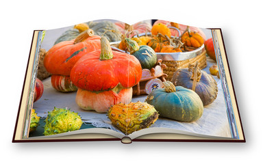 Learn to cook with pumpkins cookbook - 3D render concept image of an opened photo book isolated on white background