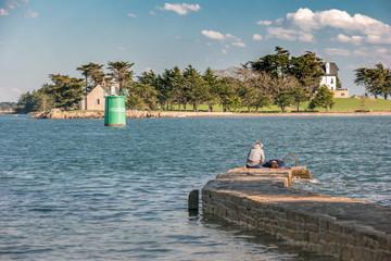 Île Boëdic dans le Golfe du Morbihan