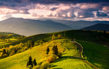 country road through green rolling hills at sunset. gorgeous springtime rural landscape in mountains under the sky with pink clouds