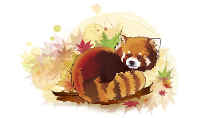 Vector illustration of red panda cartoon style. Vector Illustrated Portrait of Red Panda also called Red Bear-Cat.
