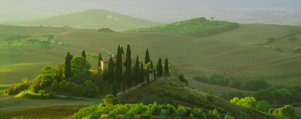 Beautiful landscape in Tuscany, Italy.Farmhouse, vineyard and olive grove.