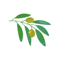 Olives on branch with green foliage. Natural food. Symbol of peace. Design template for logo, decorative product label or invitation card. Cartoon vector isolated on white