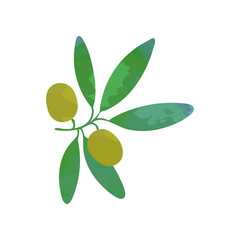 Clipart of branch with green olives and leaves. Traditional symbol of peace. Organic food concept. Design element for restaurant menu, card or product label. Isolated flat vector illustration