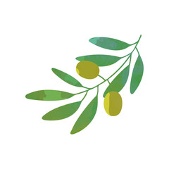 Cartoon green branch with olives and foliage in flat style. Isolated vector illustration. Organic food icon. Symbol of peace.