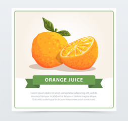 Hand drawn vector of fresh half cut orange with green leaves. Healthy food or natural product concept. Fruit with high in vitamin C. Design for juice packaging, promotional poster or card