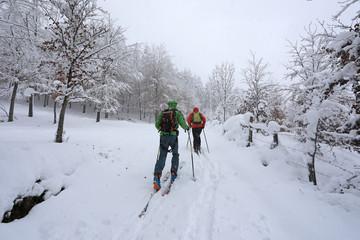 esquiadores practicando esquí de fondo travesía 4M0A0777-f17