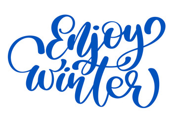 calligraphy enjoy Winter Merry Christmas card with. Template for Greetings, Congratulations, Housewarming posters, Invitations, Photo overlays. Vector illustration