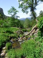 Nacimiento Rio Mundo de Riopar, Albacete.El Parque natural de los Calares del Mundo y de la Sima en Castilla-La Mancha (España)