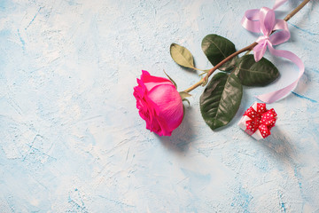 Valentines day background. Pink rose with gift  over blue texture