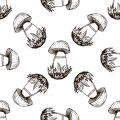 Mushrooms seamless pattern in hand drawn style