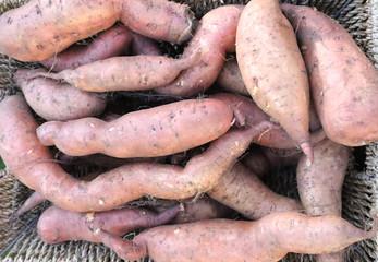 Basket with sweet potatoes