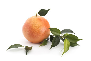 Grapefruit with green leaves on a white background