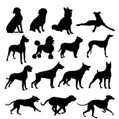 silueta perro