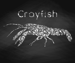 Crayfish drawn in chalk on a chalkboard. Vector illustration.