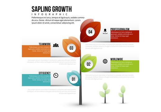 Sapling Growth Infographic
