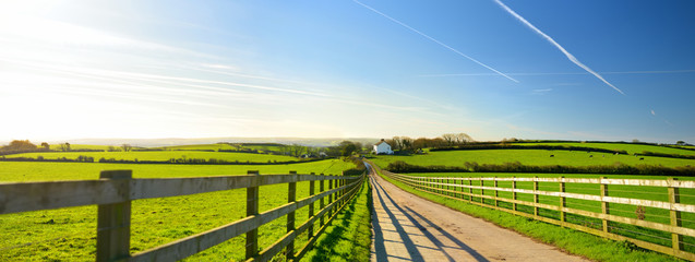 Fence casting shadows on a road leading to small house between scenic Cornish fields under blue sky, Cornwall, England Fotoväggar