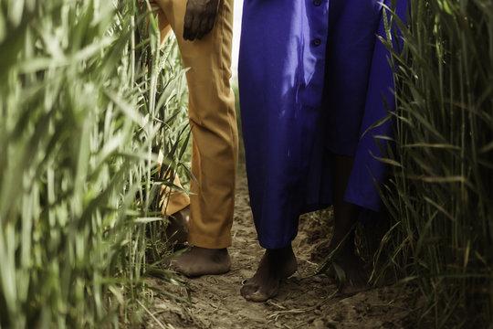 Two men in the wheat fields