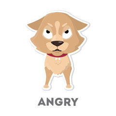Isolated angry dog.