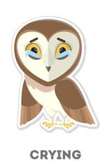 Isolated crying owl.