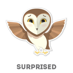 Isolated surprised owl.