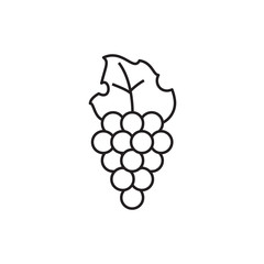 grape icon illustration