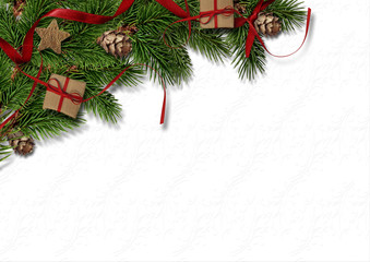 Christmas firtree with cone on white texture background