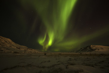 Northern Lights / Iceland