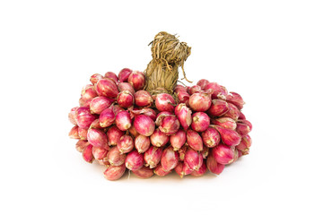 fresh shallots or onion, herb and vegetable, food ingredient