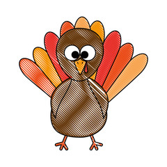 thanksgiving turkey character icon vector illustration design