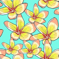 seamless pattern Hawaiian plumeria flower an exotic  vector illustration