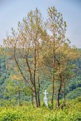 Old grave on abandoned Catholic cemetery near Chervonohorod Castle ruins in Ukraine