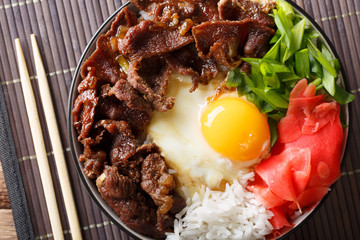 Japanese cuisine: gyudon beef with rice and onion. horizontal top view