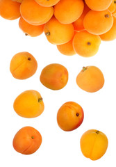heap of apricots isolated