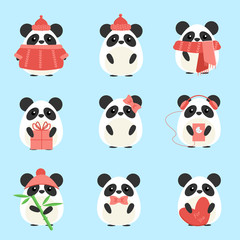 Vector set pandas in warm clothes with different subjects: bamboo, hat, scarf, gift, heart, bow. Cartoon cute illustration