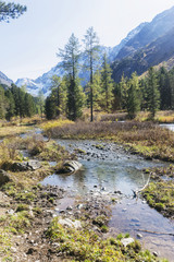 Brook in Kuiguk Valley. Altai mountains landscape.