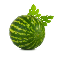 watermelon with leaves isolated