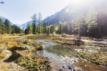 Brook in the Kuiguk Valley, Altai mountains landscape.