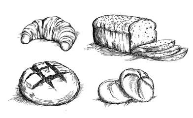 Beautiful hand drawn bread det vector