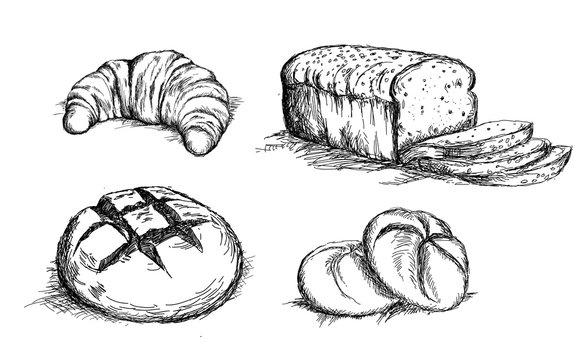 Beautiful hand drawn bread det vector