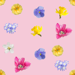 spring flowers seamless background pattern