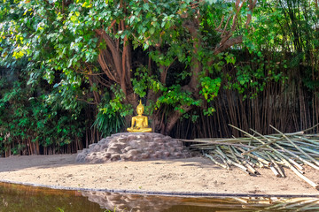 golden buddha under the insight tree, chiang mai. thailand.
